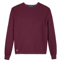 LE GRAND FROID - Le Icare prune - Pull homme
