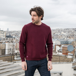 LES PULLS - Le Icare prune - Pull homme